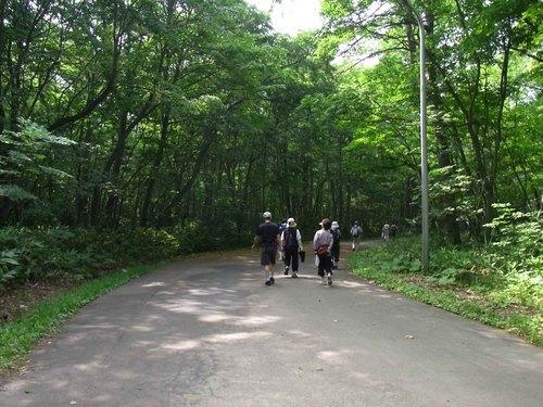 野幌森林公園2.jpg